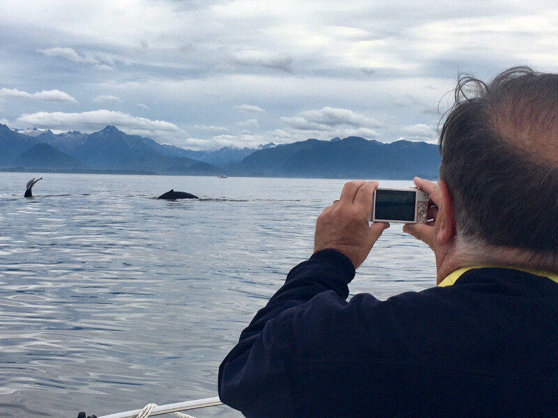 Whale Watching Tour.